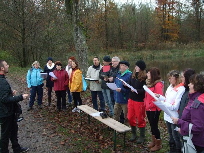 Marche musicale, Nov. 2014